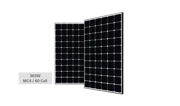 lg-business-solar-lg365q1c-a5-zoom01