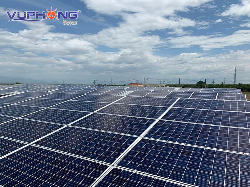 Điện mặt trời kết hợp nông nghiệp tại Việt Nam ( Lợi Ích Kép )
