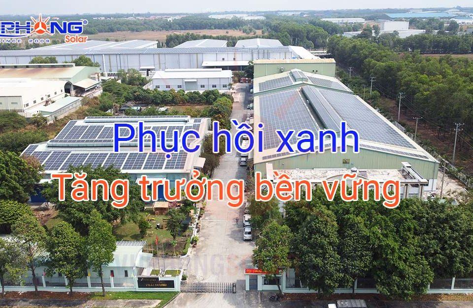 phuc-hoi-xanh-cho-tang-truong-ben-vung